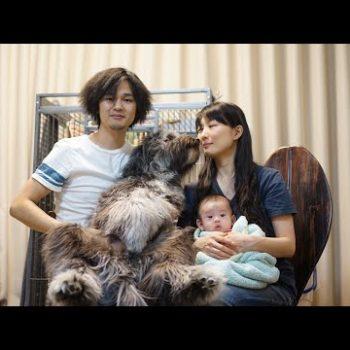 どうぶつ基金:保護犬ジオの家族 2018.7①