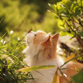 春の風を感じて